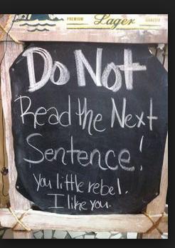 insegne di bar divertenti marketing per bar non leggere la prossima frase tu... ribelle